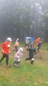 Kékes futás